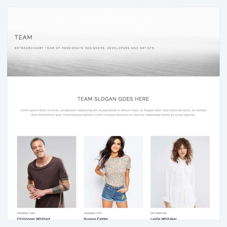 team-page-2-template-768x768